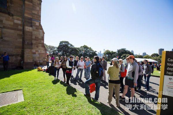 悉尼大学读研后回国发展