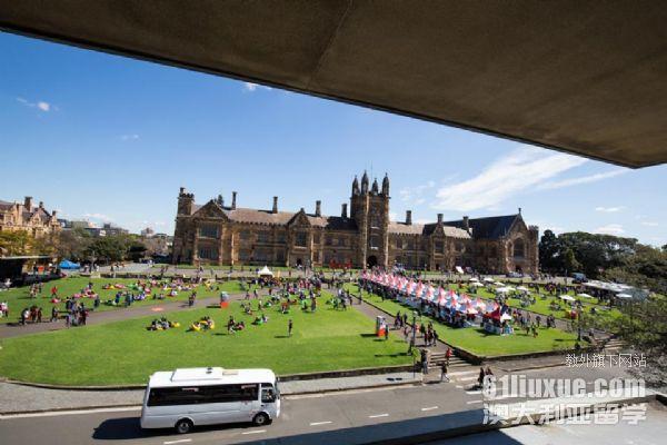 悉尼大学哪些专业比较好