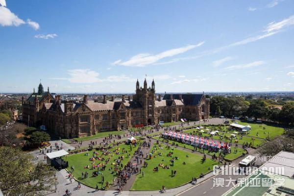 申请悉尼大学难吗