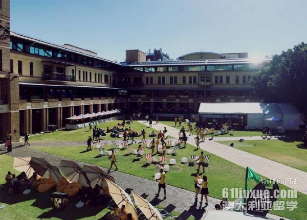 UNSW大学在悉尼哪个区