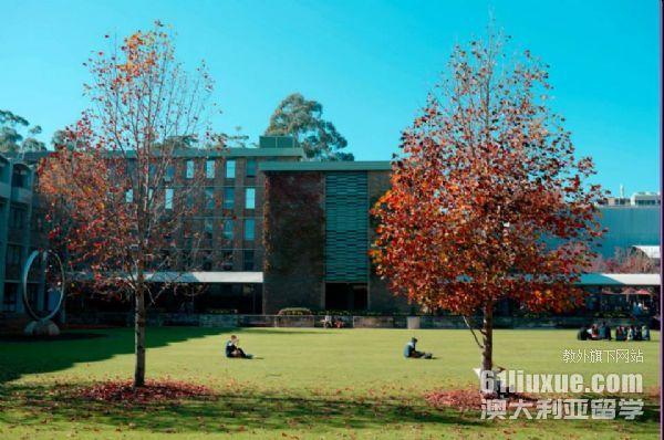 新南威尔士大学商业信息系统专业